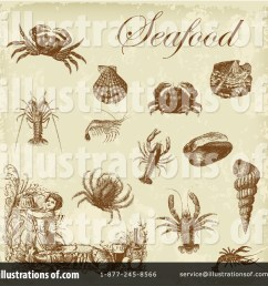 royalty free rf seafood clipart illustration 211206 by eugene [ 1024 x 1024 Pixel ]