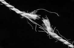 I padani tendono la corda, e questa si spezza (video)