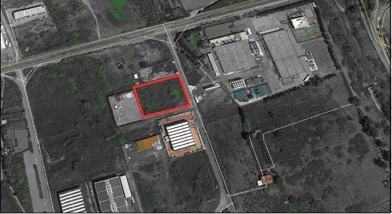 Messina, azienda agrumicola acquista terreno dell'ex Consorzio Asi