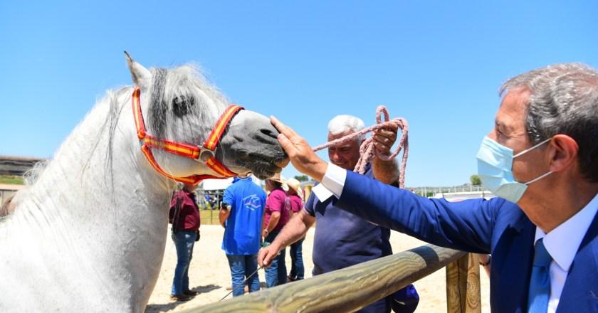 """Sport equestri, ad Ambelia aperta la """"Fiera mediterranea del cavallo"""""""