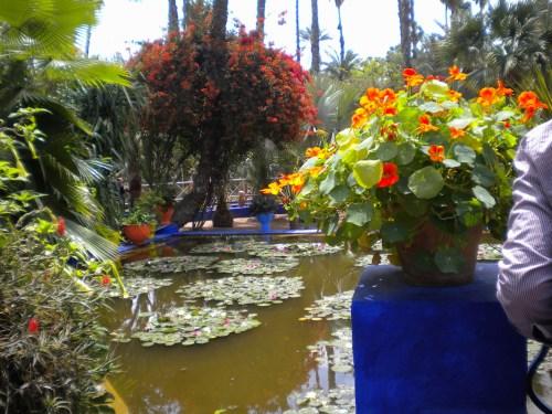 Marrakech - JardineMajorelle