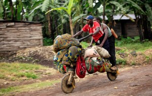 People ride with their belongings on a wooden bicycle as they flee from renewed fighting between Congolese army and M23 rebels near the eastern Congolese city of Goma
