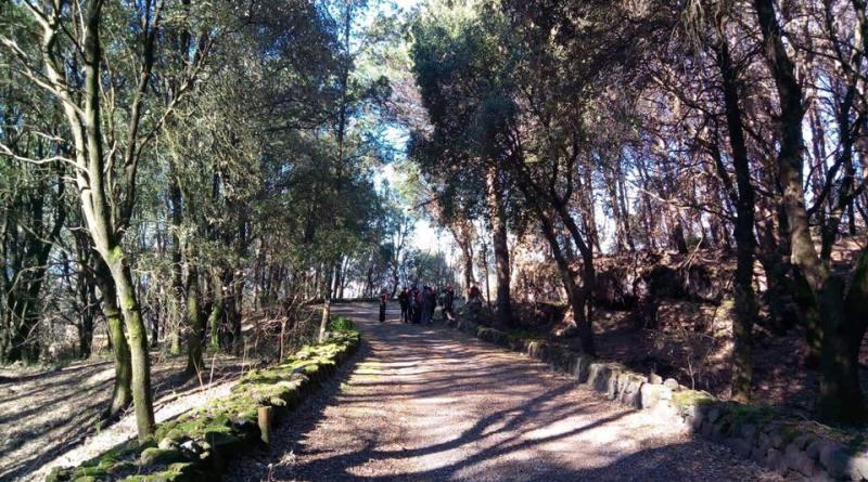 Pasquetta sul Vesuvio con le eco escursioni a cura di Econote e Vesuvio Natura da Esplorare