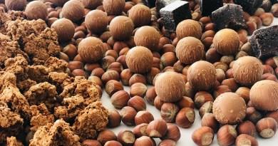 Nocciola campana: aperto a San Vitaliano il primo Store consacrato al prezioso frutto
