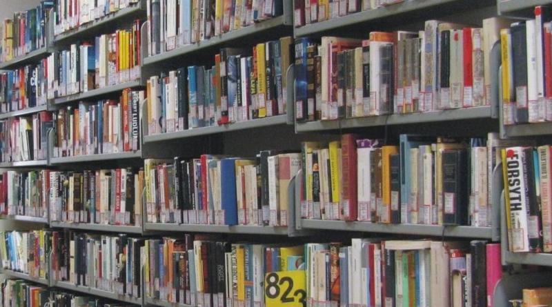 A Palma Campania la biblioteca è on line: testi e giornali consultabili da web