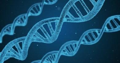 Non solo Covid: dal CNEL parte l'alleanza contro il Papilloma virus