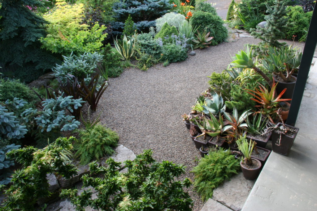 Servizi Giardinaggio roma progettazione Manutenzione