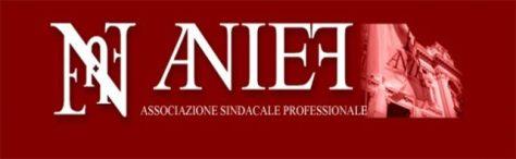 logo anief