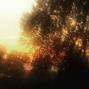 Il sole non scende mai