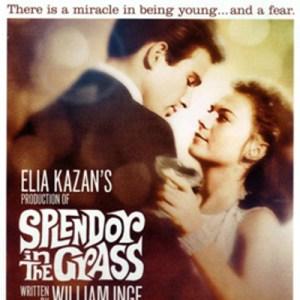 Speciale San Valentino (1/4): Splendore nell'erba, l'Amore Acerbo