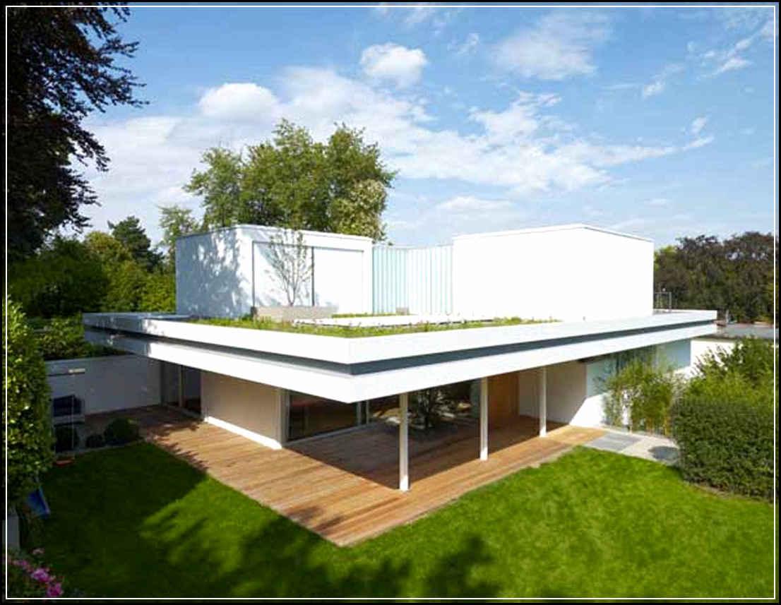 Desain Rumah Modern Minimalis 1 Lantai Gaya Tropis