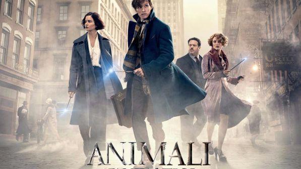 Animali Fantastici e dove trovarli, il film su Premium Cinema il 28 dicembre: trama, cast e trailer