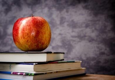 Controversie relative al personale docente: i limiti della competenza tra G.O. e G.A.