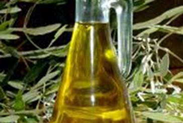 Entra in vigore la Legge salva olio italiano