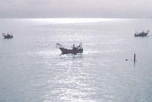 Il Consiglio comunale in favore della marineria vastese