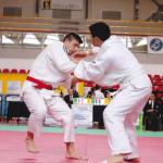 Francesco Vastola in azione