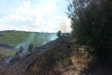 Rogo nei pressi del Villlaggio Siv, fiamme domate