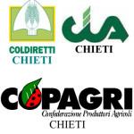 Organizzazioni_agricole