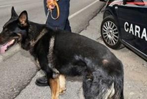 Controlli dei Carabinieri sul territorio, due arresti per droga