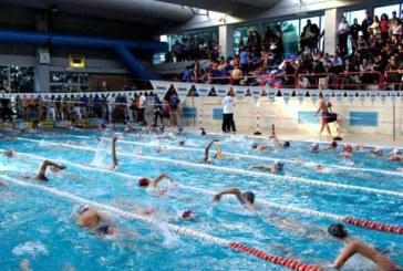 San Salvo, coppa olimpica di nuoto assegnata alla piscina Tano Croce