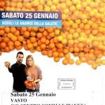 airc-arance della salute-2014