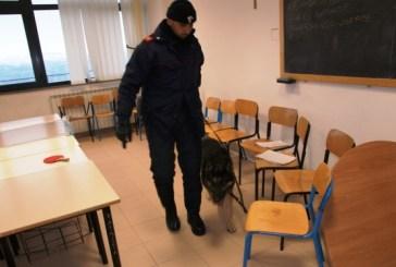 Controlli antidroga nelle scuole