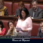 Amato_Parlamento