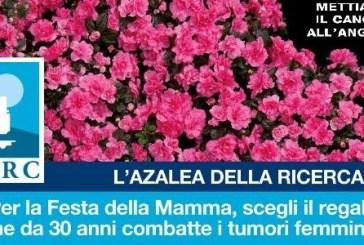 Per la Festa della Mamma torna l'azalea dell'Airc