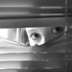 donna-stalker