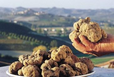 L'Abruzzo, terra ricca di tartufi