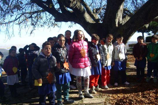 festa albero-liscia-2