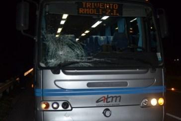 Tragedia sulla Trignina, muore sotto l'autobus