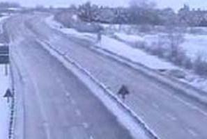 Bufera di neve nella Marsica chiuse autostrada e scuole