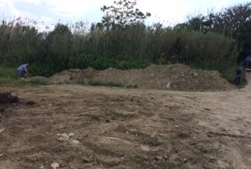 Riqualificazione delle dune: lo studio allo Iaap