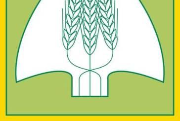 Carenza idrica, Coldiretti lancia l'allarme siccità. A rischio le coltivazioni.