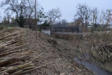 Salmonella nel fiume, il Pd accusa la Giunta di San Salvo