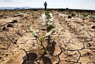 """Manca l'acqua nei Consorzi Sud e Centro, Cia Chieti- Pescara: """"A pagare sono gli agricoltori. Non siamo più disposti a tollerare"""""""