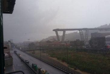 Tragedia a Genova, crolla il ponte sulla A10