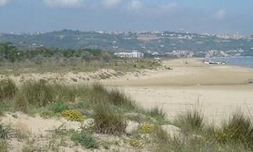 Turismo responsabile, collocati a Vasto Marina i cartelli per la flora protetta dell'area SIC