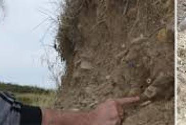 Teschi ed ossa sulla spiaggia di Punta Aderci