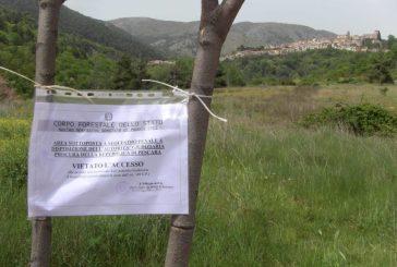 Bonifica del sito di Bussi sul Tirino, a breve un incontro con il ministro Costa