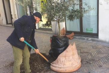 Vaso rotto da cinque giorni, strada pulita dai negozianti