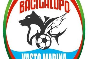 La Bacigalupo Vasto Marina al campionato d'élite 2019-2020