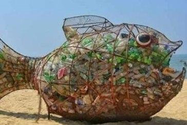 """Pesce """"mangia plastica"""", da domani attività di sensibilizzazione e promozione del turismo ecosostenibile"""