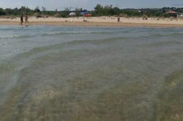 Bottiglia di plastica sulla riva, ha almeno 40 anni