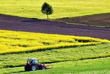 In Molise 679 imprese agricole sono guidate da giovani