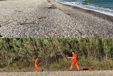 Spiaggia di San Nicola, interrati i ferri pericolosi e rimossa la spazzatura. Smargiassi: