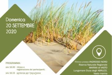 Progetto Calliope, non solo dune: scopriamo la Riserva di Marina di Vasto