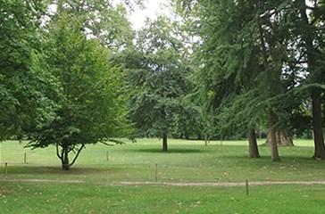 Parchi, giardini pubblici e aree gioco: ecco le regole di accesso e di controllo