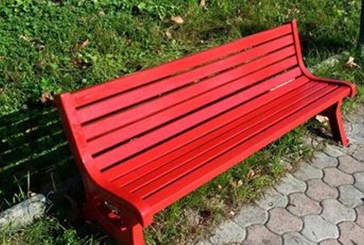 Votata all'unanimità l'istituzione di una panchina rossa in paese, Insieme per Cupello: